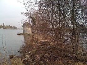 Extrémité nord-est de l'île Fleurie appartenant à Carrières-sur-Seine