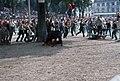 Fêtes de Bayonne-Courses de vaches (2)-19650808.jpg