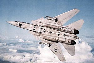 F-14A VF-1 from below with AIM-7 and AIM-9 1982.jpg