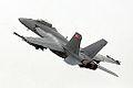 F-18 Super Hornet (5145090133).jpg