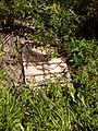 FLT M03 19.6 mi - Puncheon, 8' long, 2x6x24 deck, 4x4 stringers - panoramio.jpg
