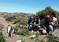 Familia y Pingüinos.jpg