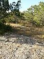 Far West Side, San Antonio, TX, USA - panoramio (10).jpg
