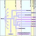 Feliform-Timeline.jpg