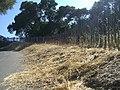 Fence along path - panoramio.jpg