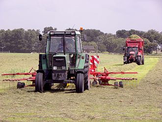Hay rake - A tractor with a rotary rake forms a windrow, another one with a loader wagon follows and collects the hay for silage.