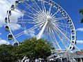 Ferris Wheel at V&A Waterfront.jpg