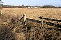 Field near Breaston - geograph.org.uk - 642655.jpg