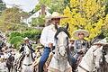 Fiestas Patrias Parade, South Park, Seattle, 2015 - 236 - the horses (21597105835).jpg