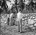 Filmers aan het werk tijdens het koninklijk bezoek, Bestanddeelnr 252-3302.jpg