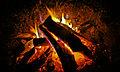 Fire (2089461558).jpg