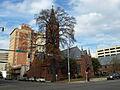 First Presbyterian Birmingham Nov 2011 03.jpg