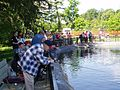 Fishing Day at the Northeast Fishery Center in Lamar, PA. (4678933010).jpg