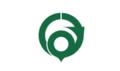 Flag of Hannan Osaka green version.png
