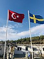 Flags of Turkey and Sweden.jpg