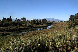 Agly river with the Canigou mountain