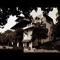 Flickr - fusion-of-horizons - Conacul Brătianu (3).jpg