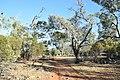 Flinders Ranges SA 5434, Australia - panoramio (105).jpg