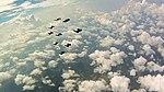 Flock Flying over Clouds (6367740261).jpg