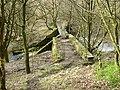 Footbridge over brook - geograph.org.uk - 380549.jpg