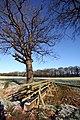 Footbridge over stream - geograph.org.uk - 752260.jpg