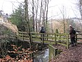 Footbridge over the Langley Burn, Haydon Bridge - geograph.org.uk - 1726130.jpg