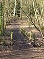Footpath in Ambarrow Court - geograph.org.uk - 1161747.jpg