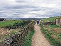 Footpath on Werneth Low - geograph.org.uk - 1507885.jpg