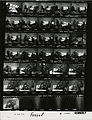 Ford A3083 NLGRF photo contact sheet (1975-02-04)(Gerald Ford Library).jpg