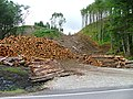Forestry Operations - geograph.org.uk - 39569.jpg