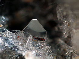 Forsterite on Sanidine - Ochtendung, Eifel, Germany.jpg