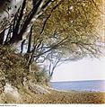 Fotothek df ps 0001199 Landschaften ^ Insellandschaften.jpg