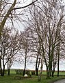 Fresnoy-en-Chaussée, calvaire 1.jpg
