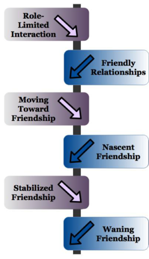 Friendshipmodel1.png