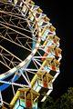 Gäubodenvolksfest 2011 - Riesenrad bei Nacht HDR.jpg