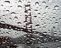 GGB refracts in rain dropletes edit.JPG