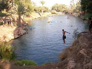 Gan HaShlosha National Park - Natural warm water pool at Gan HaShlosha
