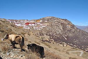 Gelug - Ganden monastery, Tibet, 2013