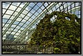 Gardens by the Marina Bay - Dome Clouds 01 (8353153800).jpg