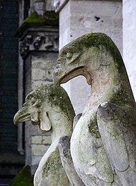 Gargouilles Amiens oiseaux.jpg