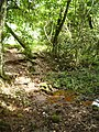 Garruchos - RS, Brazil - panoramio (13).jpg