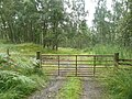Gate on track to Home Farm - geograph.org.uk - 1436997.jpg