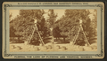 Gathering oranges at Dr. Anderson's grove, from Robert N. Dennis collection of stereoscopic views.png
