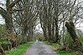 Ger Ynys - near Ynys - geograph.org.uk - 404533.jpg