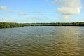 Gfp-florida-everyglades-national-park-a-lake-in-the-everglades.jpg