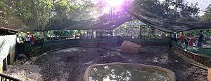 Giant armadillo - A giant armadillo enclosure at Villavicencio's Bioparque Los Ocarros