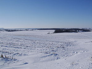 Winterlandschaft in der Scales Mound Township