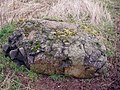 Glacial erratic - geograph.org.uk - 360669.jpg