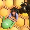 Google Honeycomb photo.jpg