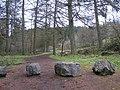 Gortin Glens Forest Park (3) - geograph.org.uk - 1711698.jpg